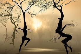 treesdancing