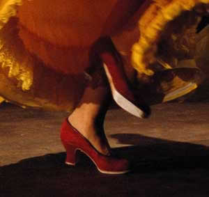 Red Flamenco Shoes.