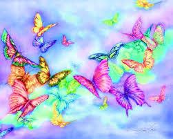 butterfliesmulti