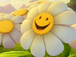 smiley face daisy