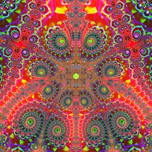 Ayahuasca image 4