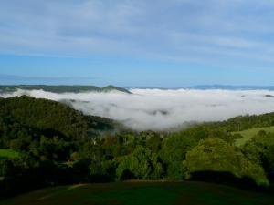 maleny mist