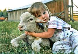 cute animal and child