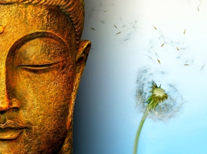 buddha impermanence