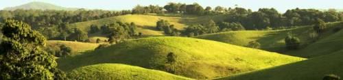 Green hills Maleny